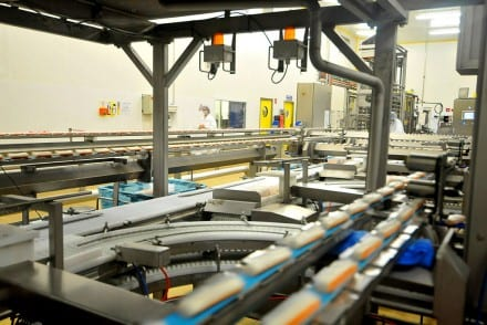 Fabrication de Surimi Fleury Michon Venez Vérifier